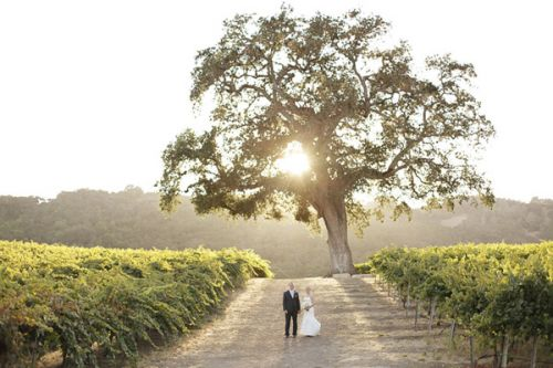 34-Laura-Murray-Hammersky-California-Wedding-Photography