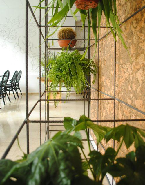 jardim_vertical_em_estantes
