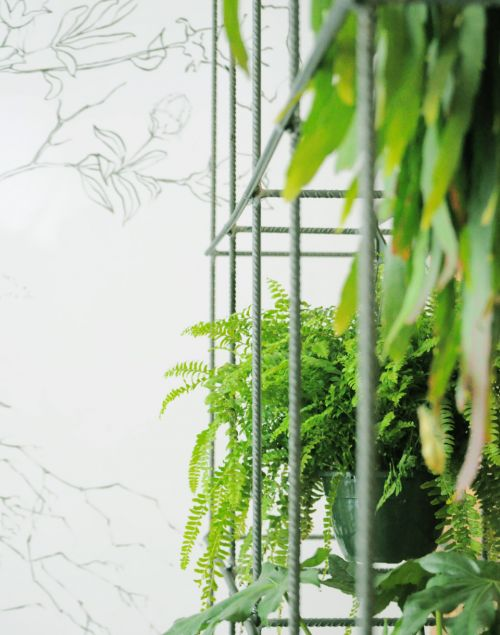 plantas_penduradas_para_decorar