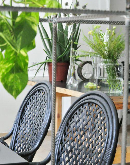 decorar_com_plantas