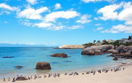 boulders beach áfrica do sul