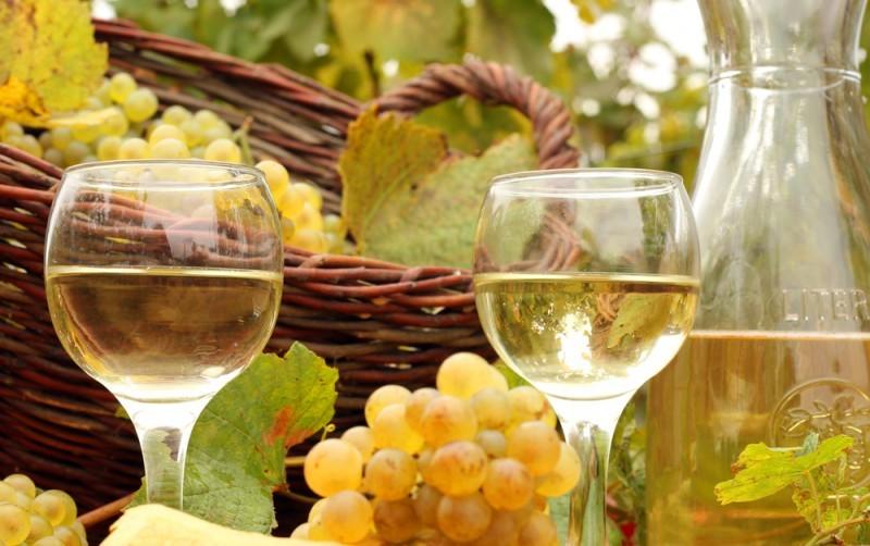 produção vinho para casamento - revista icasei