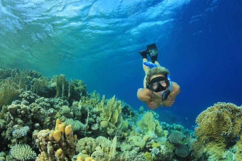 lua-de-mel-fernando-de-noronha-snorkel-revista-icasei