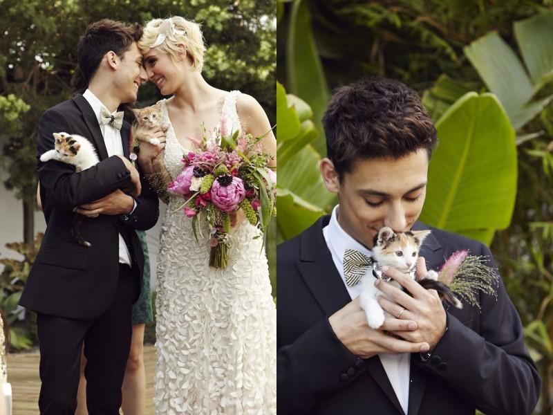 pet-no-casamento-no-campo-gato-revista-icasei (1)