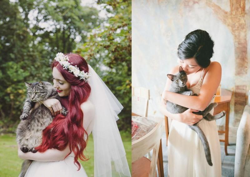 pet-no-casamento-no-campo-gato-revista-icasei (2)