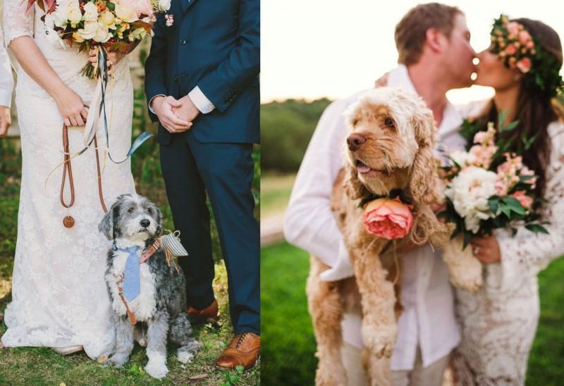 pets-no-casamento-no-campo-cachorro-revista-icasei (2)