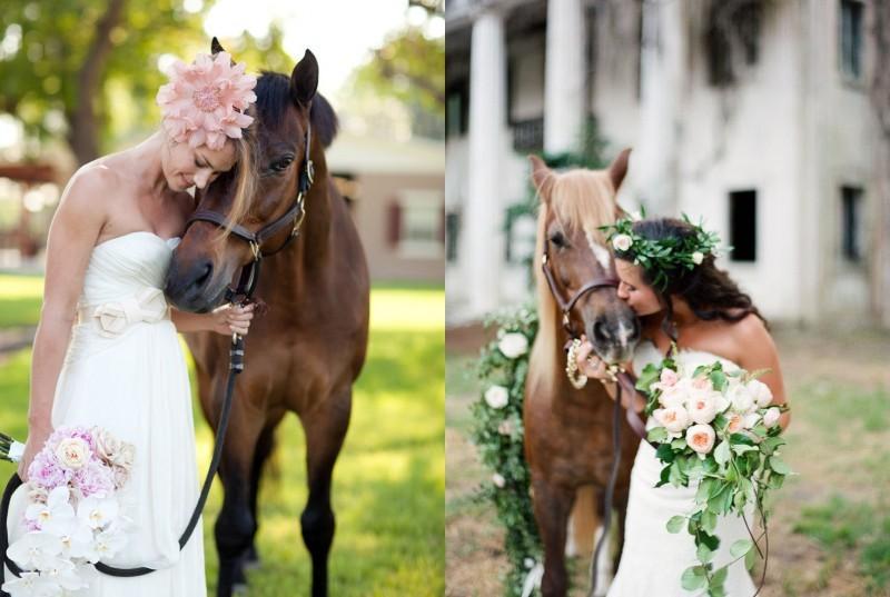 pets-no-casamento-no-campo-cavalo-revista-icasei (3)
