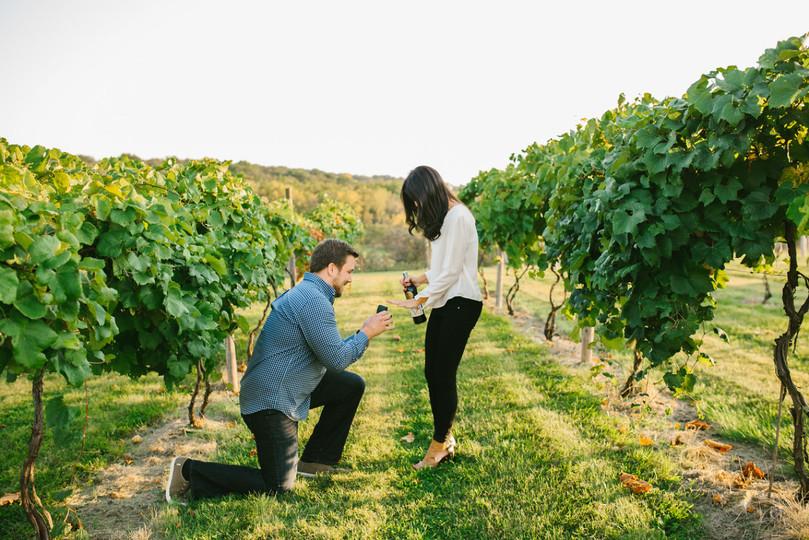 pedido de casamento - revista icasei (1)