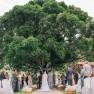 10-Melhores-locais-para-casamento-em-Recife-Celeiro