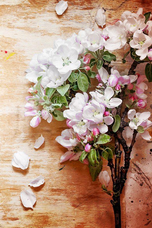 Fall-Decoração-com-galhos-secos-sakura