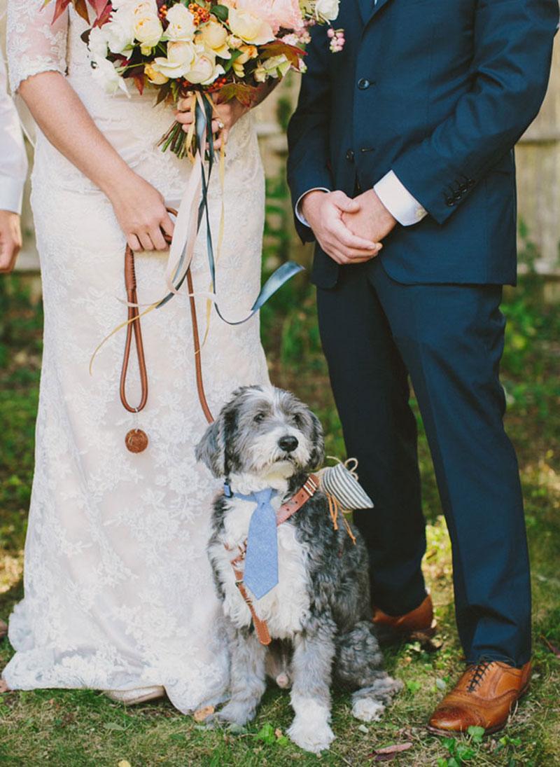 Ideias-nao-tradicionais-para-o-casamento cachorro