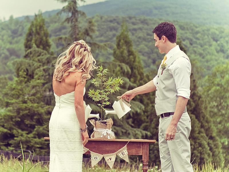 Casamento-alternativo-dicas-planta