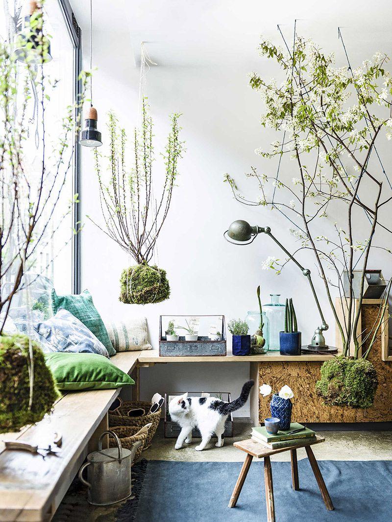 Decoracao-sustentavel-para-a-casa-nova-verde