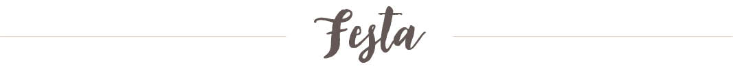 Casamento Real Leliane e Vinicius Festa