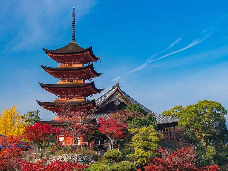 Lua de mel no outono Japão