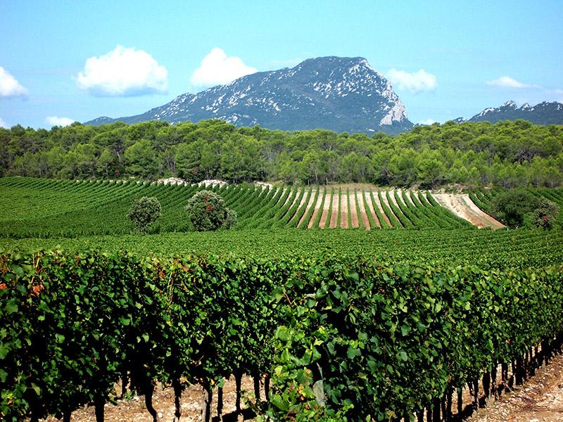 Destination wedding 5 lugares para casar na França Languedoc