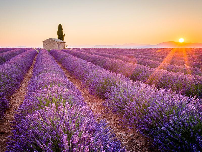 Destination wedding 5 lugares para casar na França Provença