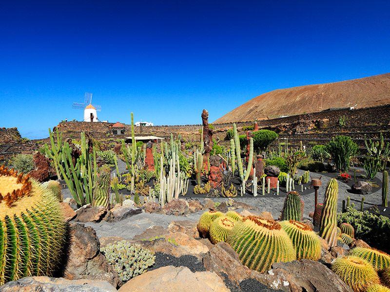 Lua de mel destinos exóticos Lanzarote