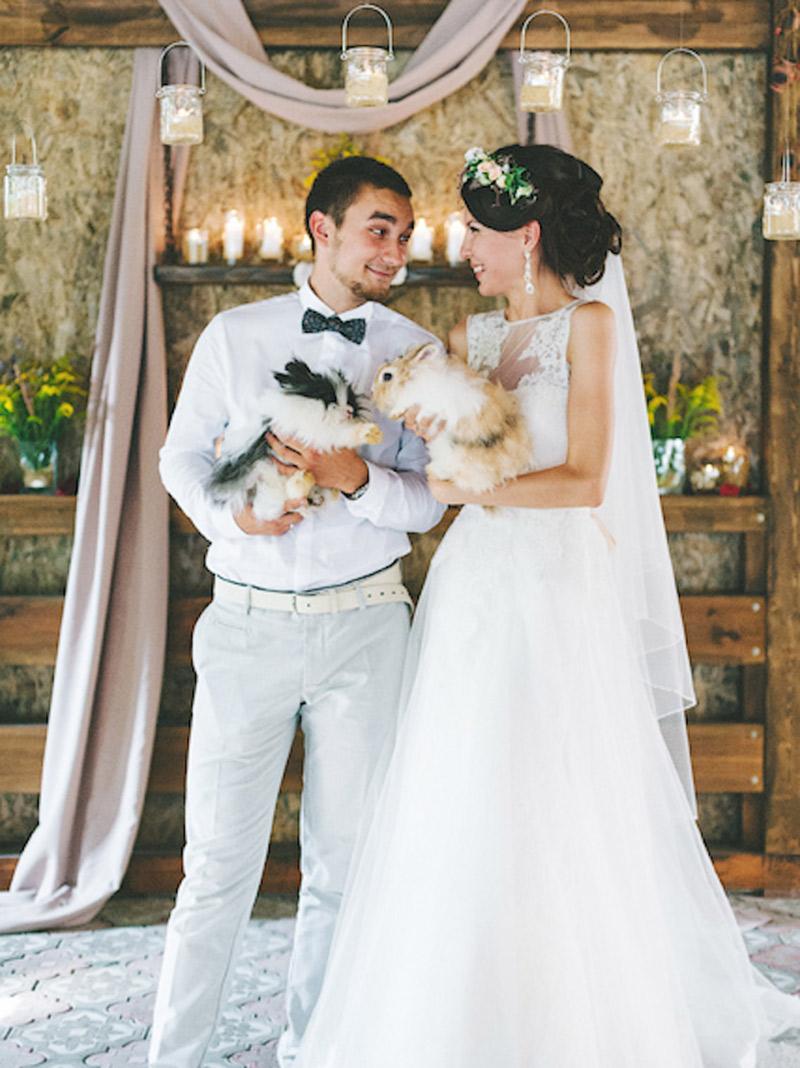 Pet no casamento Como incluir o bicho de estimação