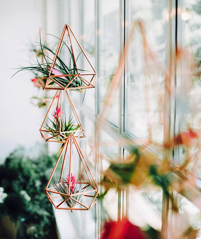 Plantas e folhagens decoração de casamento bromélia