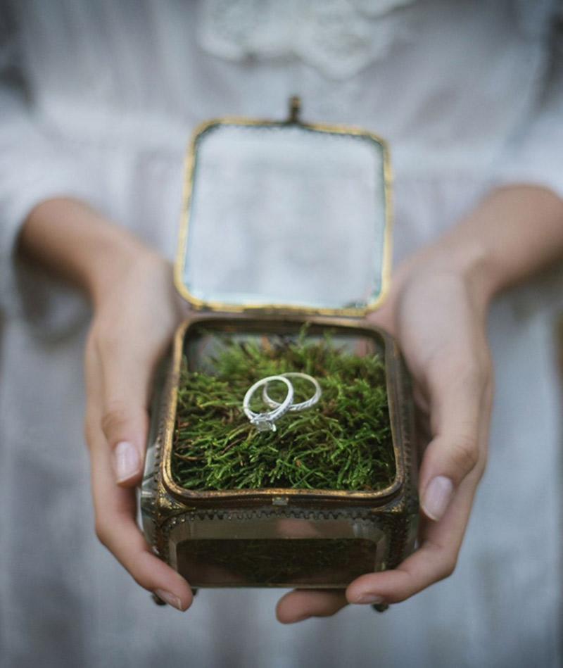 Plantas e folhagens decoração de casamento musgo