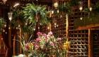 Plantas e folhagens decoração de casamento samambaia