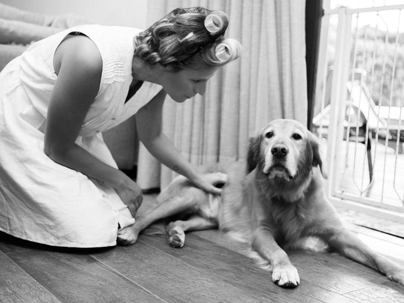 making-of-de-noiva-com-pets