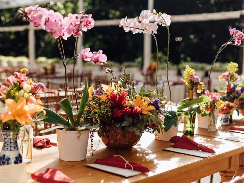 decoração de casamento ao ar livre com flores plantadas
