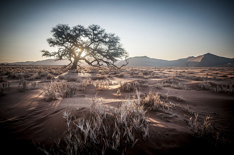 ano novo a dois namíbia