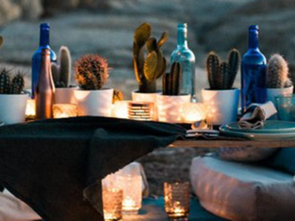 decoração de casamento com cactos