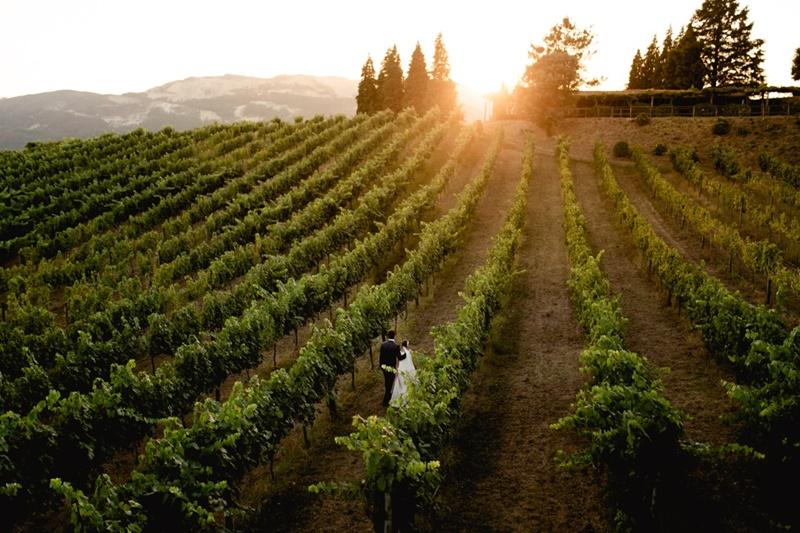 casamento em vinícolas de portugal