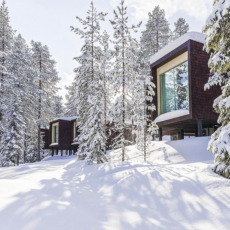 Lua de Mel para quem gosta de frio 5 reprodução Artic TreeHouse Hotel
