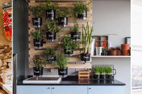 Horta em casa | Veja como fazer a sua