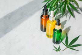 Óleo vegetal | Conheça os benefícios para corpo, rosto e cabelo