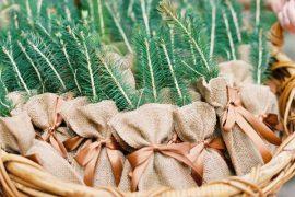 Lembrancinhas sustentáveis para casamento | 5 ideias para apostar