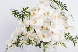 André Pedrotti lança ação #VAMOSFLORIR para evitar o desperdício de flores