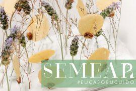 Projeto Semear | Blog Lápis de Noiva lança movimento para incentivar a sustentabilidade no casamento